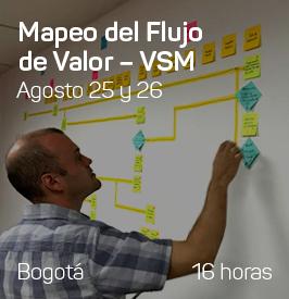 Banner-programas-VSM
